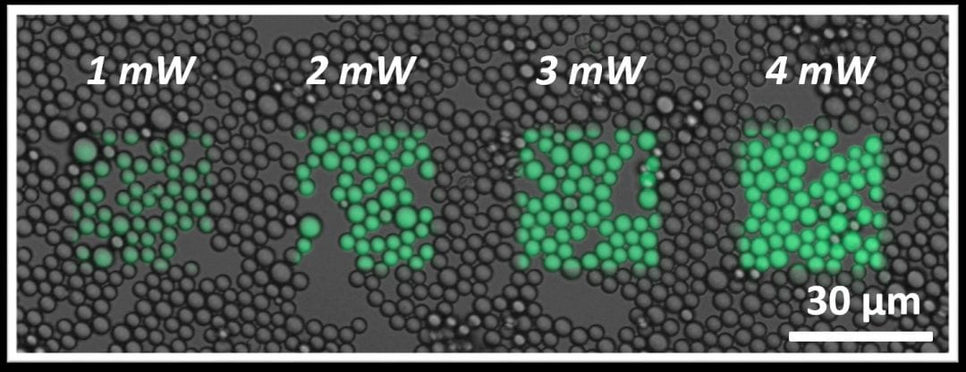 Precision Functionalisation of Polymeric Microparticles