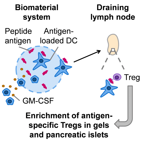 Hydrogels for Immunotherapy