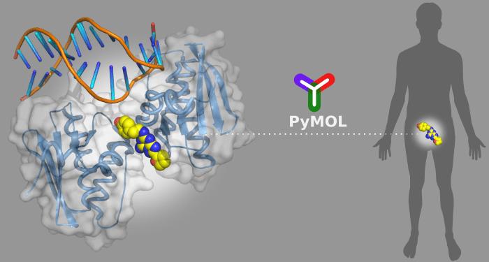 Python-Based Software for Computational Drug Design