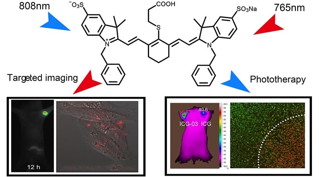 Multifunctional Small Molecular Fluorophore for Cancer Therapy