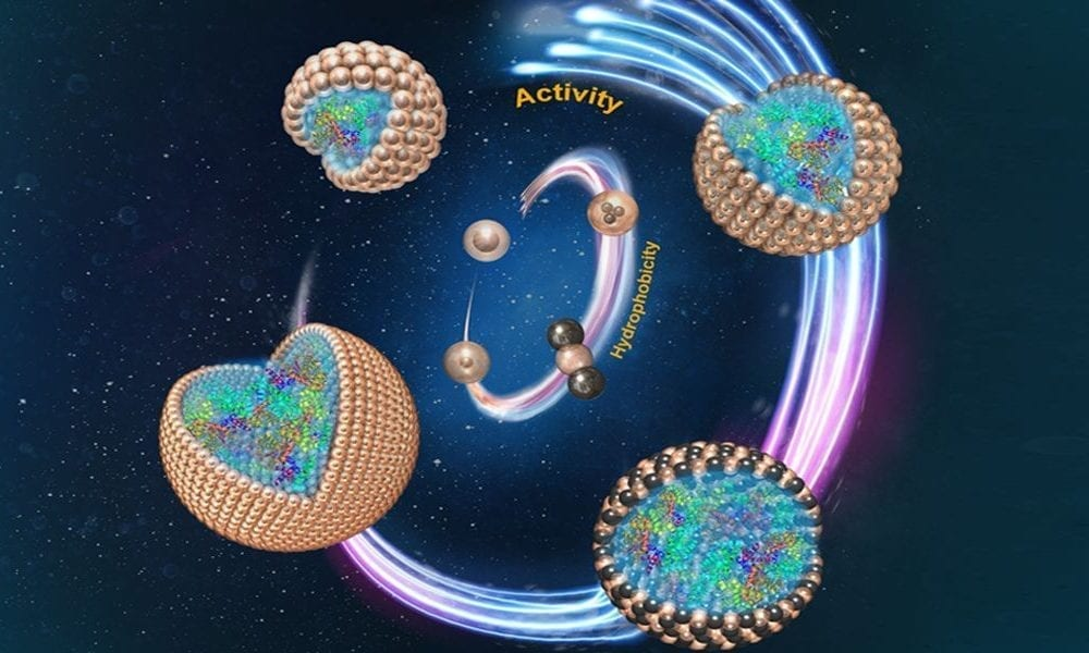 particles in stabilizing food emulsions essay Abstract nanoparticles are a promising alternative to surfactants to stabilize emulsions or foams in enhanced oil recovery (eor) processes due to their effectiveness in very harsh environments found in many of the oilfields around the world.