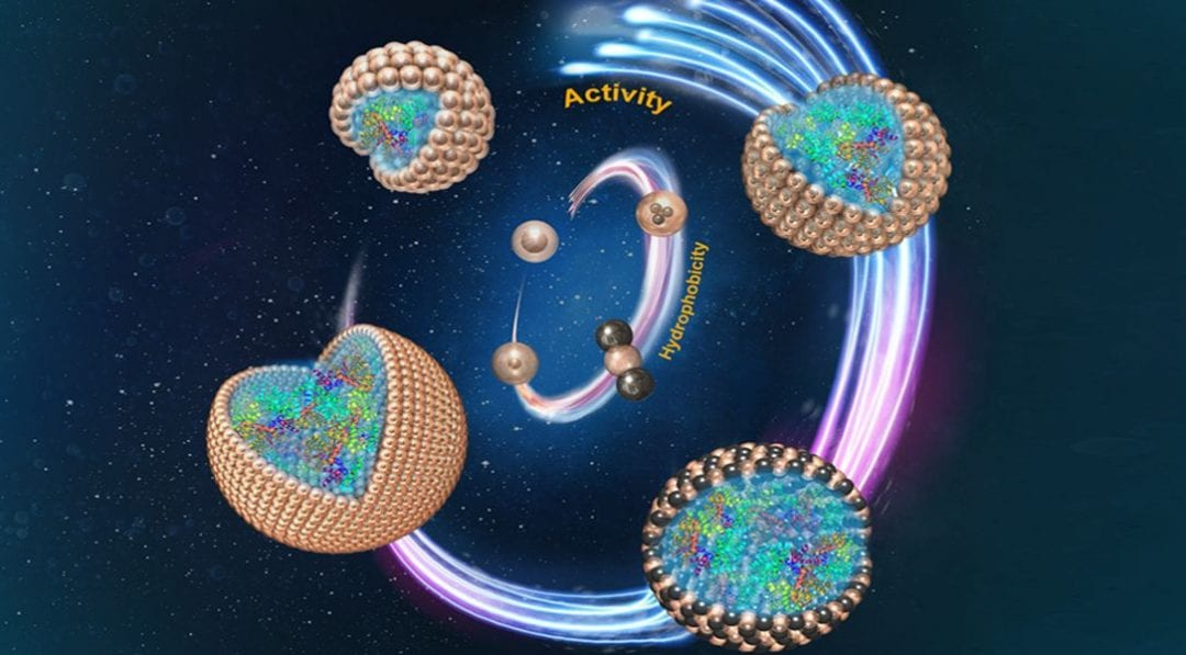 Stabilizing Pickering Emulsions for Enzyme Catalysis