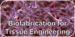 Biofabrication for Tissue Engineering
