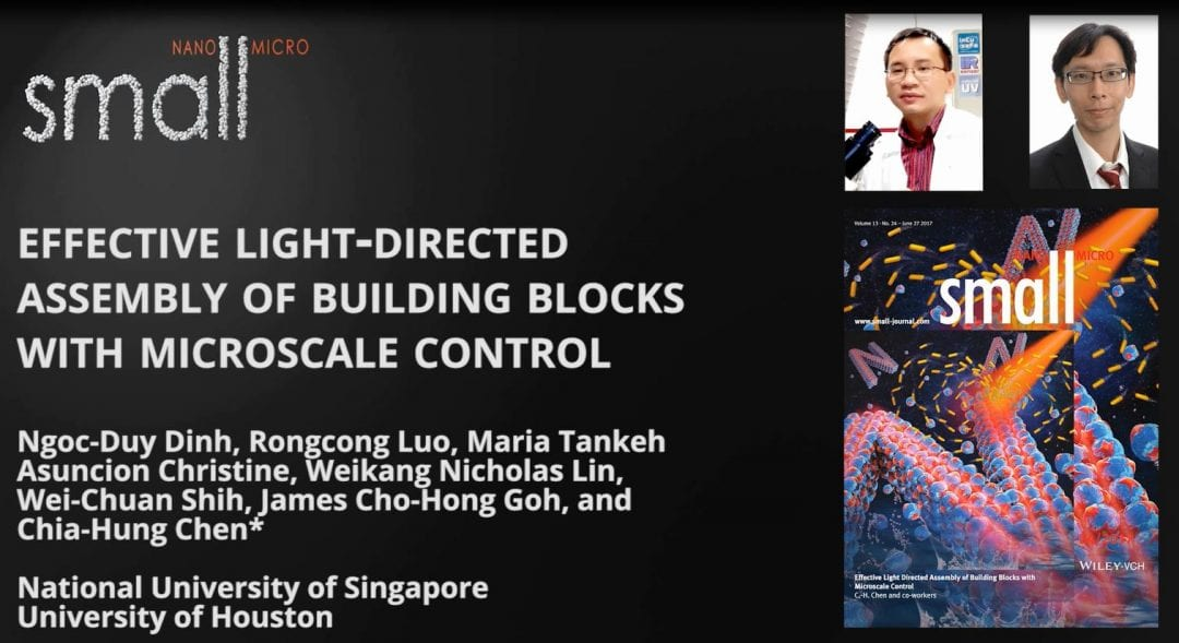 Effective Light Directed Assembly of Building Blocks with Microscale Control