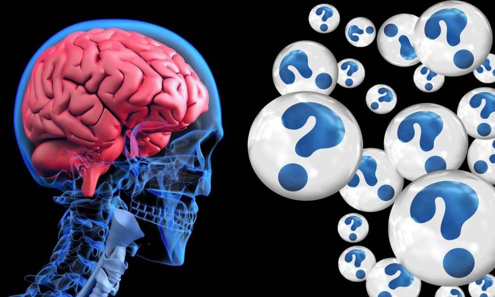Novel Formulation Additives for an Anti-Alzheimer's Disease Drug
