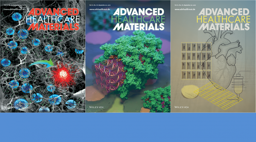 Cover Art Featuring Dna Origami Cardiac Scaffolds And Stem Cells Advanced Science News
