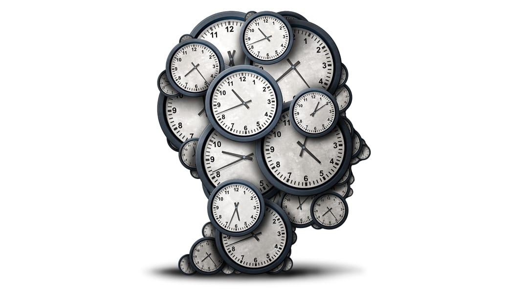 Image result for The circadian clock Nobel