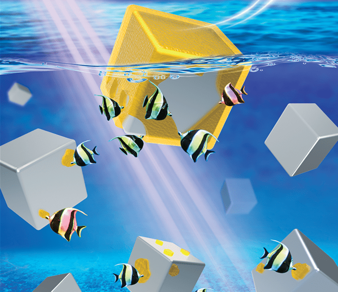 Noble Metal Nanocrystals with a Clean Surface