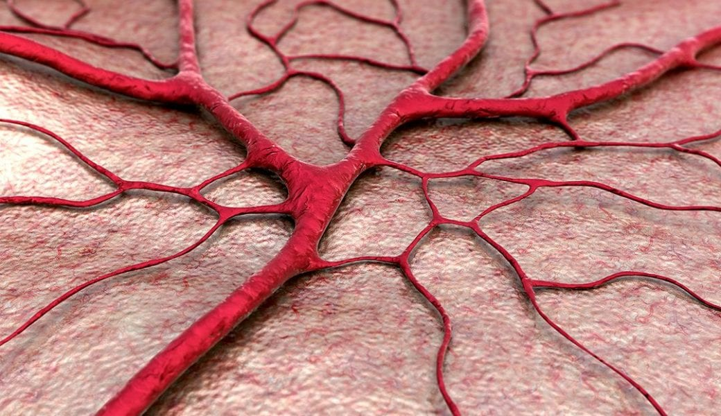 The Fourth Dimension Fabricating Artificial Blood Vessels With 4d