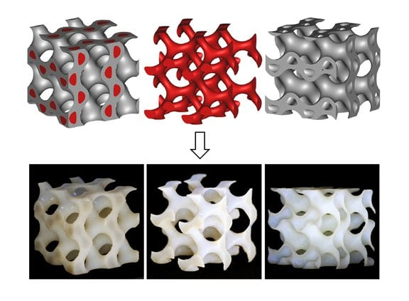 Nature-Inspired Lightweight Cellular Co-Continuous Composites