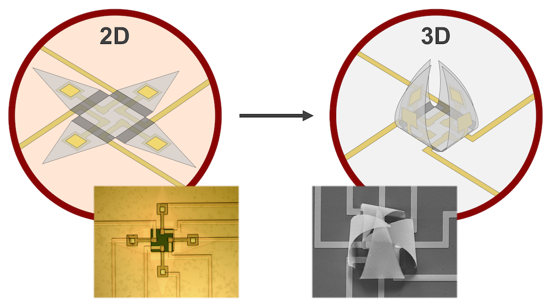 Self-Folding Shells: A 3D Recording Device for Single Live Cells