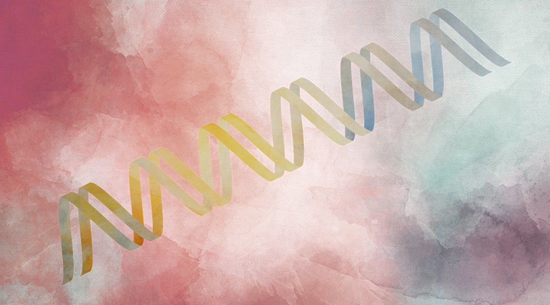 DNA Replication Revisited: Single-Molecule Analyses Reveal Its Highly Dynamic Nature