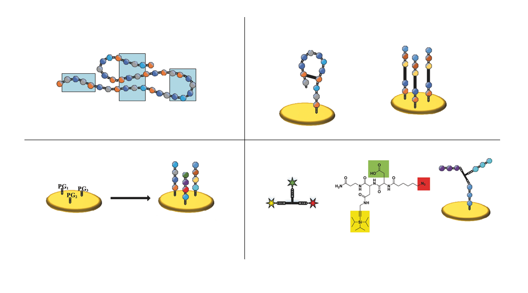 Let's Play Proteins! Microarrays of 3D Assembled Peptide Structures