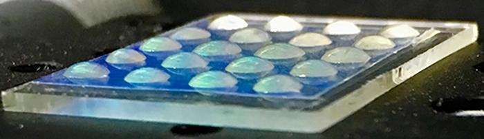 Liquid Crystal/Hydrogel Biosensor Arrays