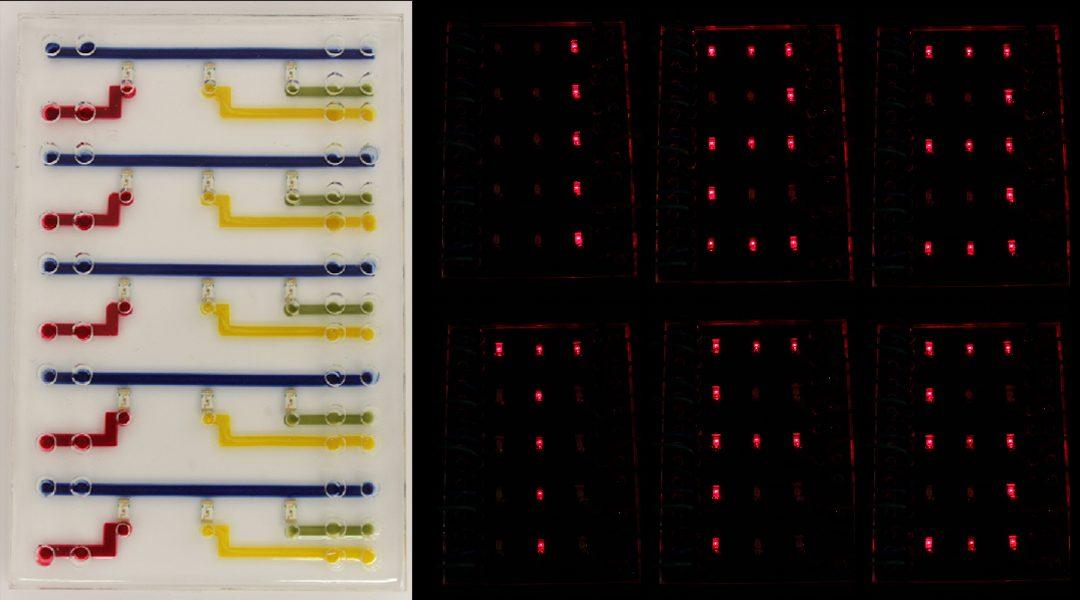 Bioelectronic Hydrogels