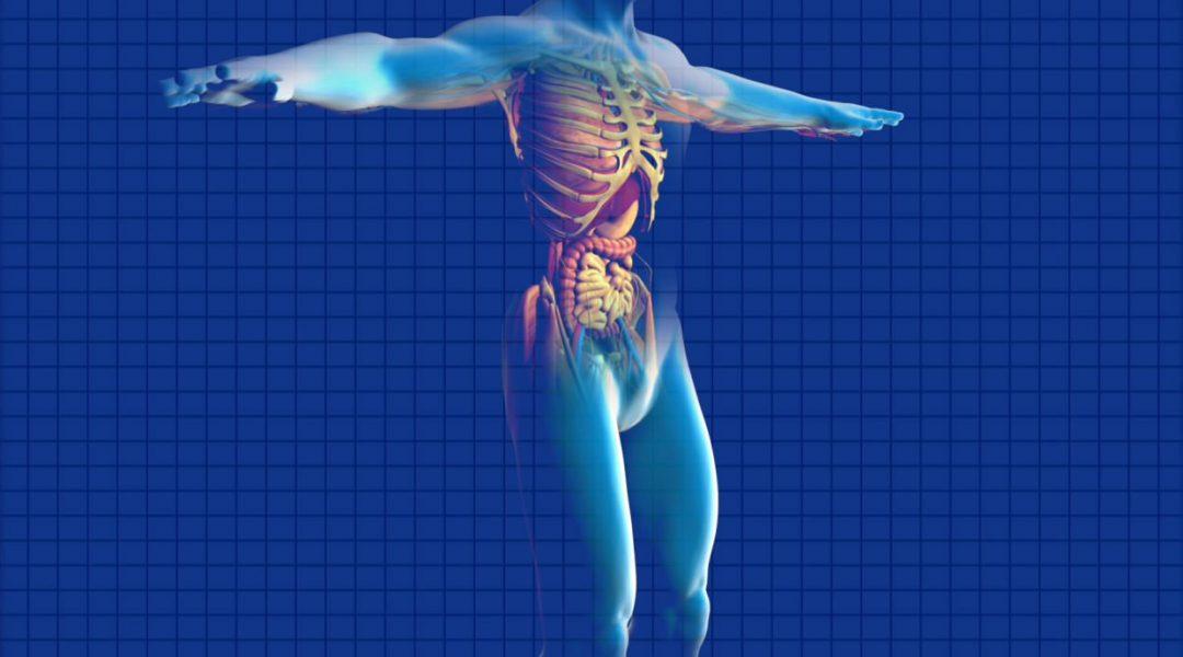 Kidney Cancer Diagnosis using Raman Spectroscopy