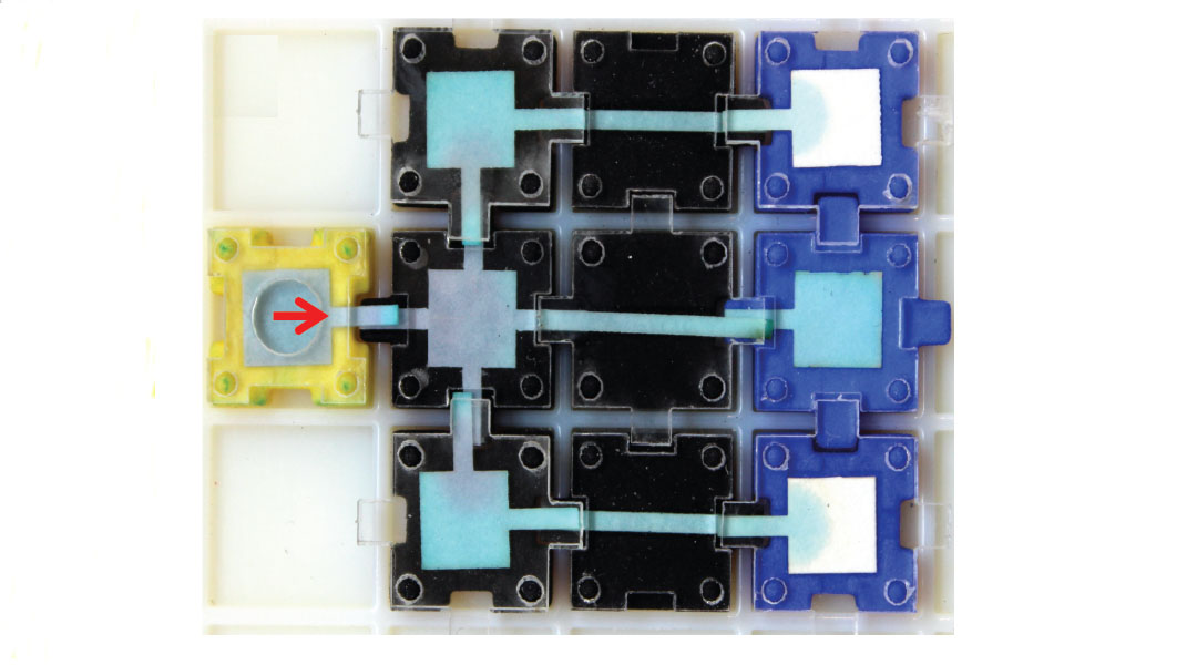 Assembly Required: A User-Friendly Approach to Paperfluidic Point-of-Care Devices