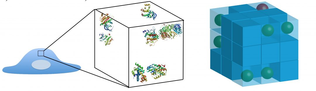 Simulating Complex Systems: Agent-based Modeling in Molecular Systems Biology