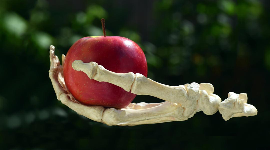 Building Better Bone (Repair)