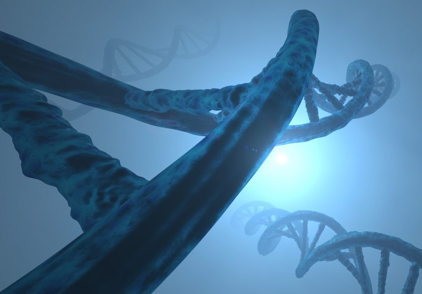 Detecting DNA Point Mutations