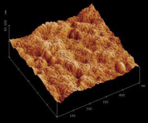 AFM, polymer solar cells
