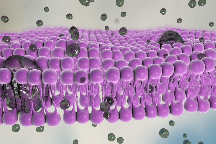 Using Single Step Atmospheric‐Pressure Plasma To Fabricate Biosensors