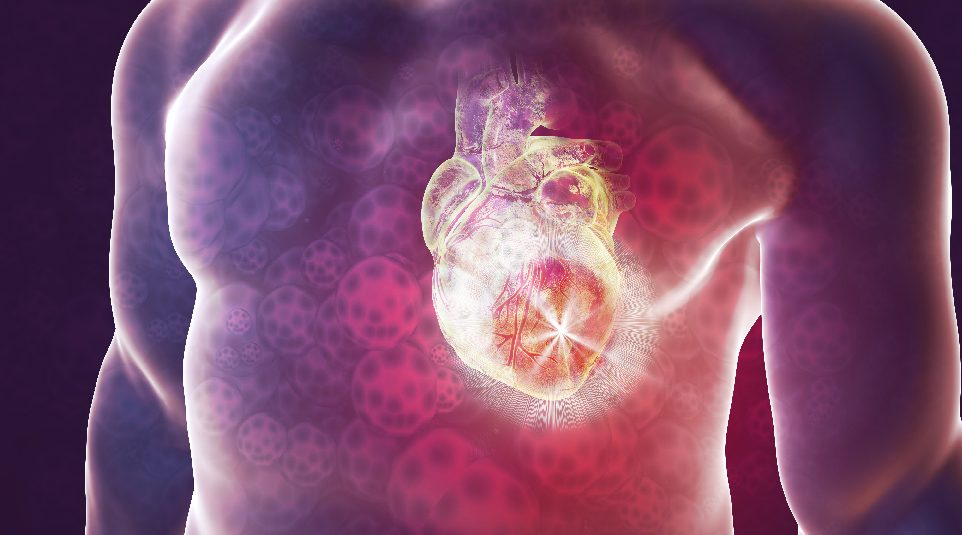 Injectable Hydrogel Composite against Heart Attack