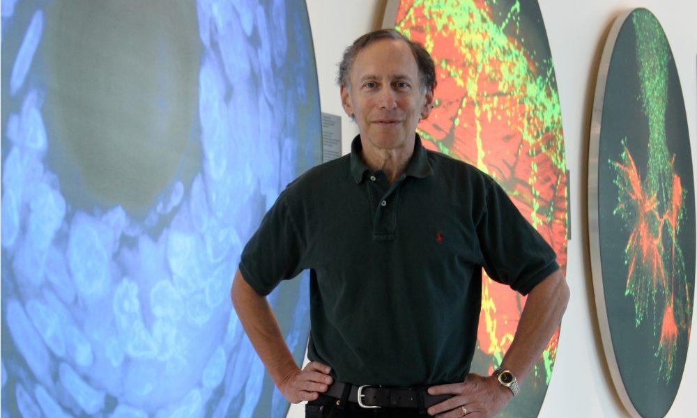 Hall of Fame Highlight: Robert S. Langer