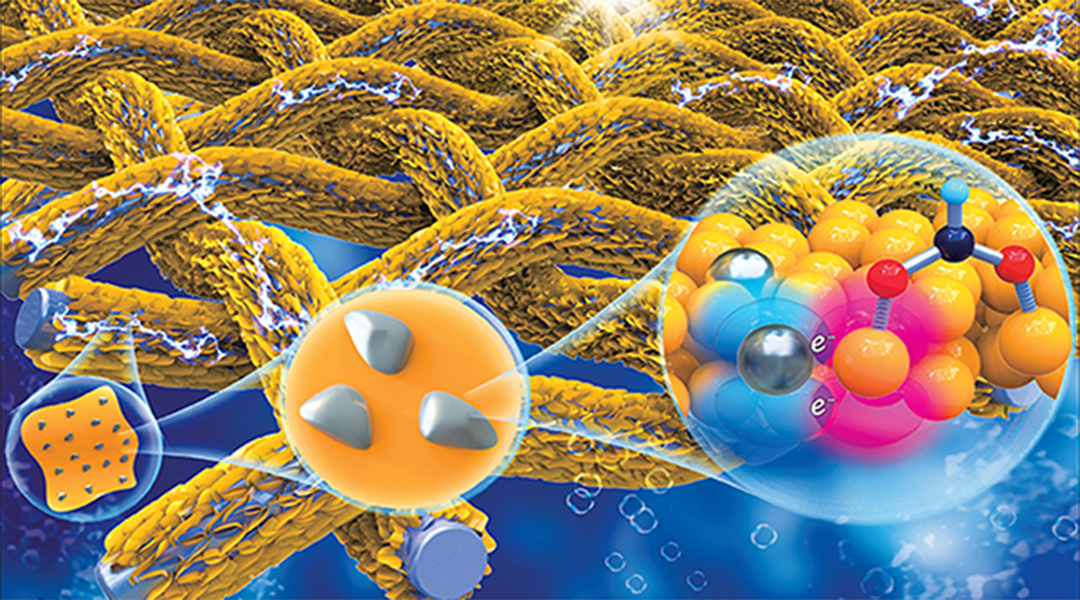 Converting Carbon Dioxide to Formate with a Highly Selective Electrocatalyst [Video]