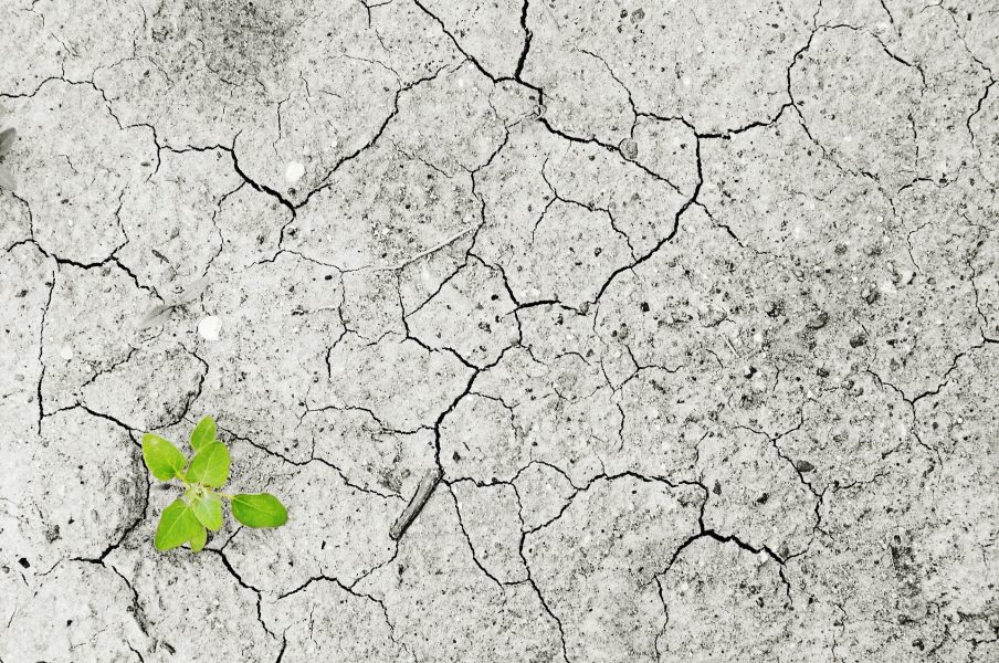 Causes of Unequal Climate Change Vulnerability