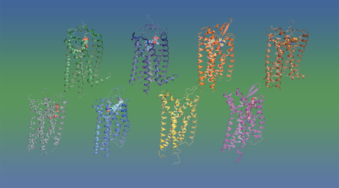 Accelerating Drug Discovery for Targeting G Protein-Coupled Receptors