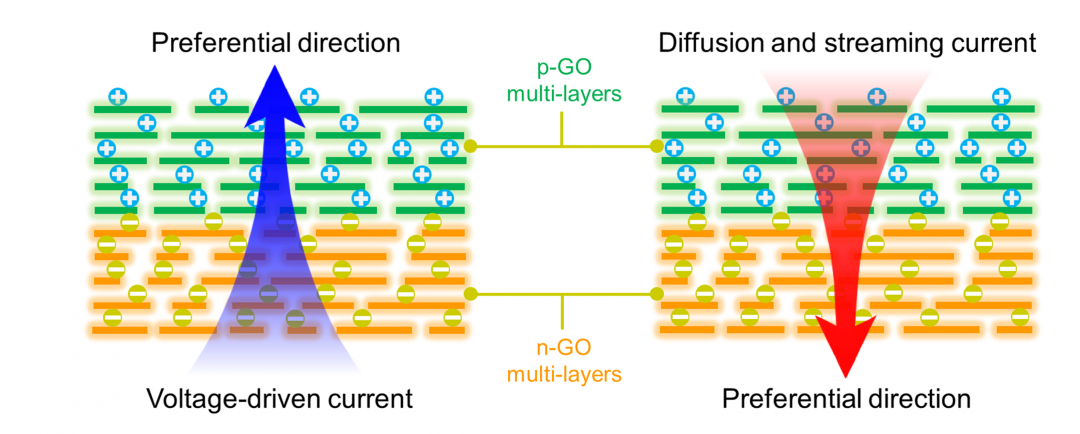 2D Nanofluidic Heterojunctions: Electrokinetically Tunable Ion Transport