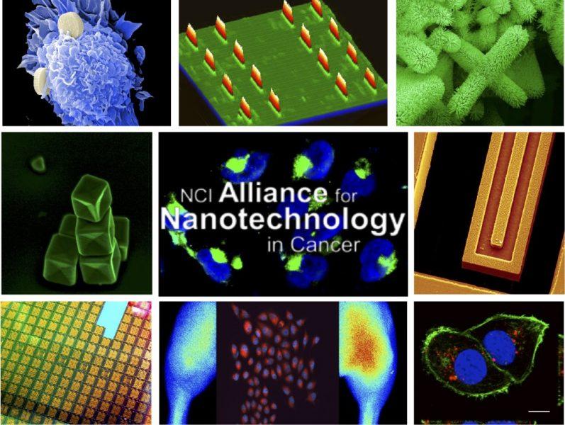 NCI Alliance for Nanotechnology in Cancer