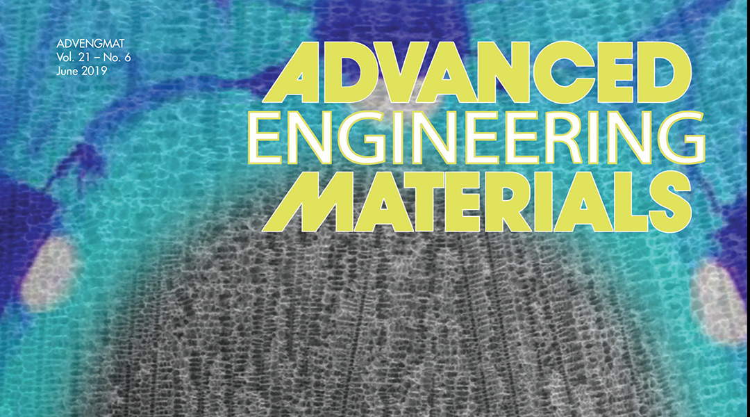 Advances in Cellular Materials and Transport Applications