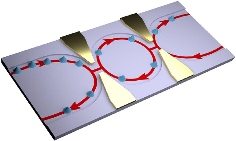 A Step Toward Quantum-Coherent Circuits