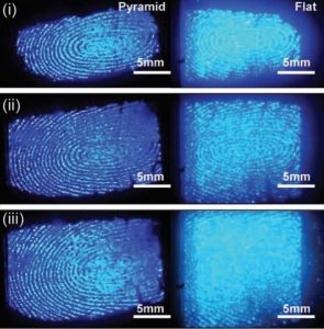 Clear Digital Fingerprint