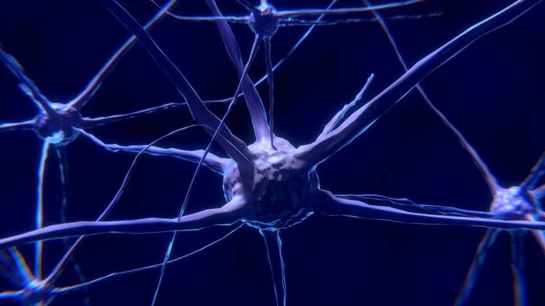 3D Modeling of Blood–Brain Barrier Dysfunction in Alzheimer's Disease