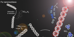 Beyond Haber-Bosch: Non-Equilibrium Photocatalysis