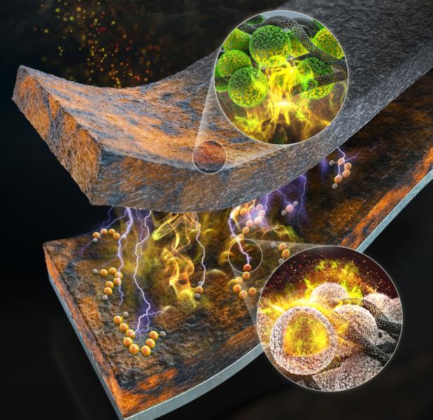 Nobel Prize in Chemistry: Reactions