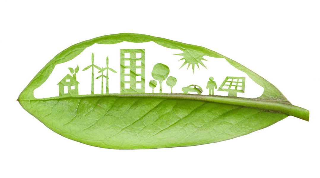 A Circular, Bio-Based Plastic Economy