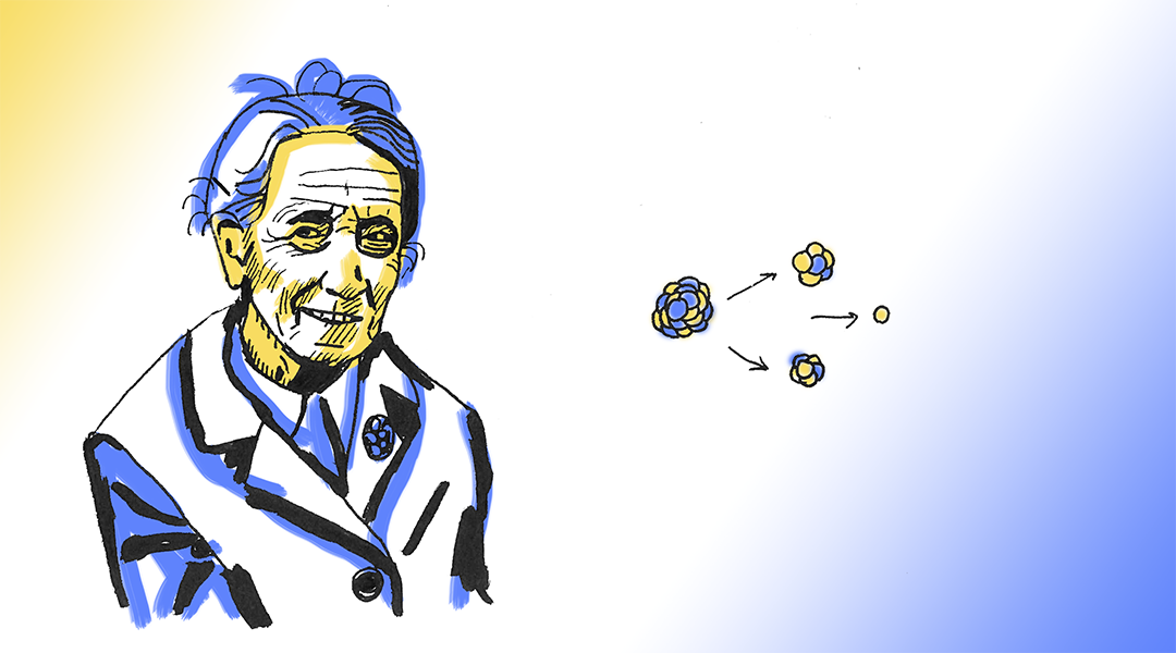 Pioneers in Science: Lise Meitner