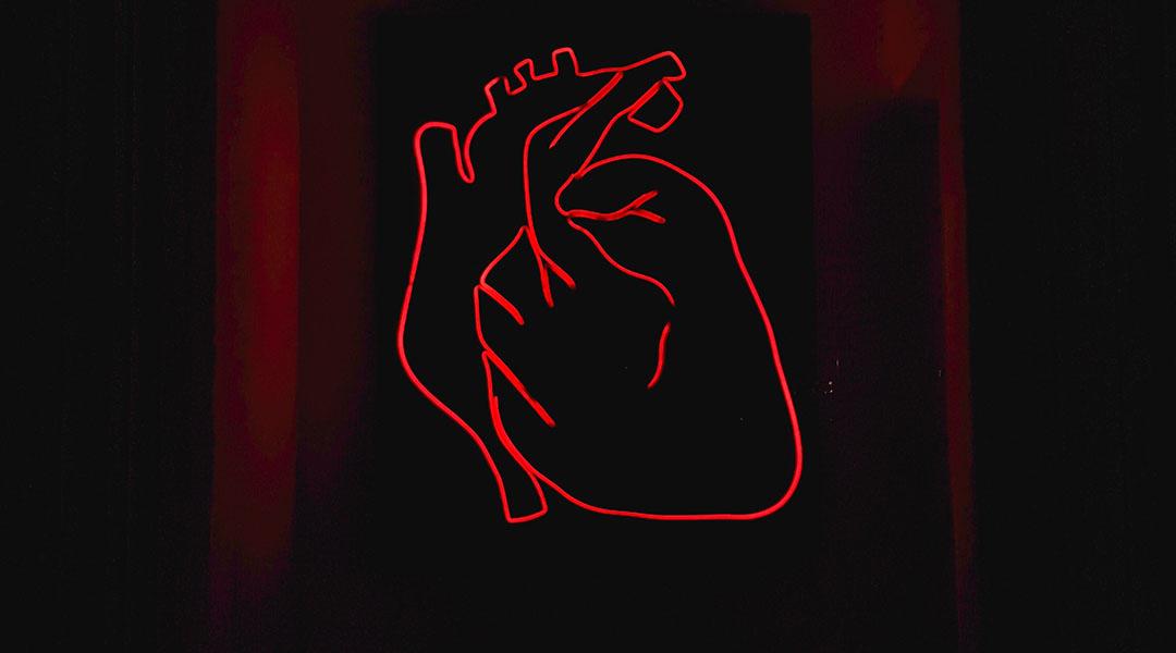 How Computational Models Can Aid Cardiac Research