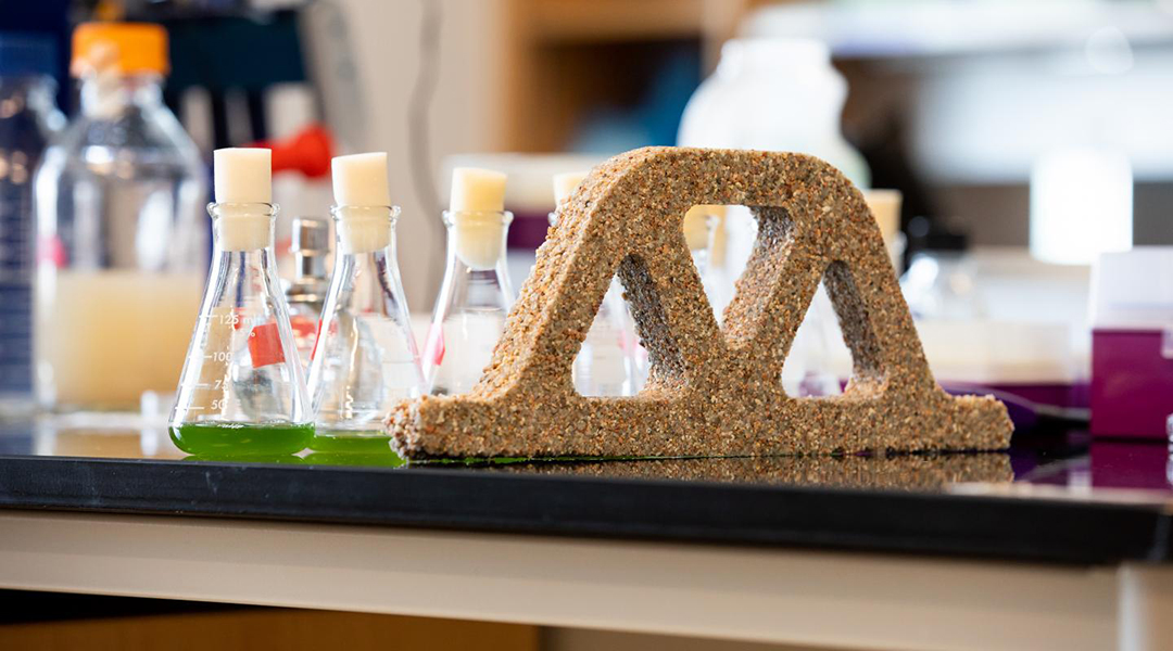 Scientists create living concrete from bacteria and sand
