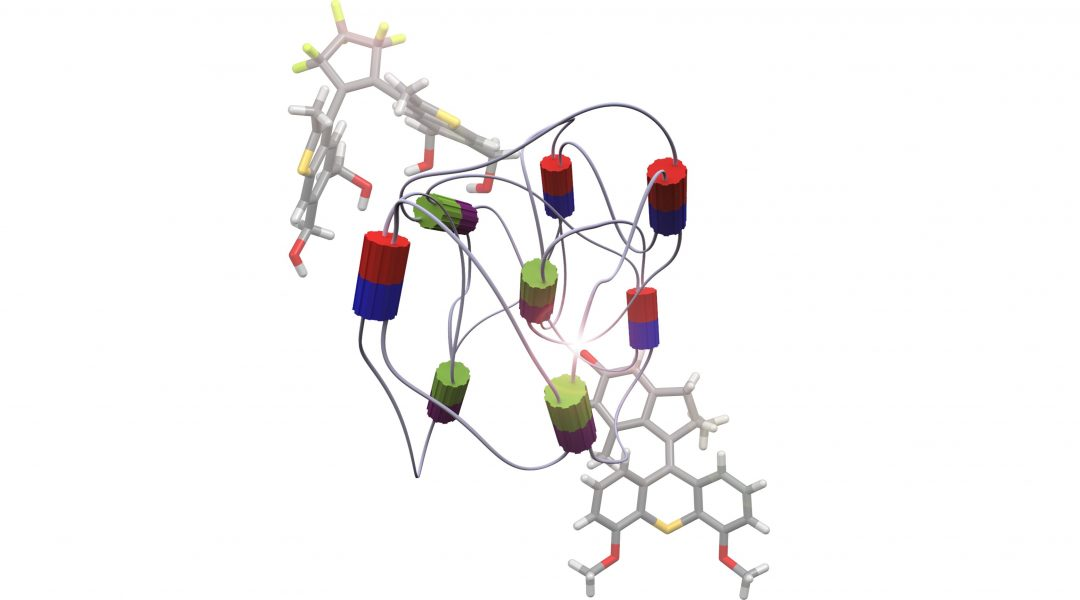 From molecular motors to stimuli-responsive materials