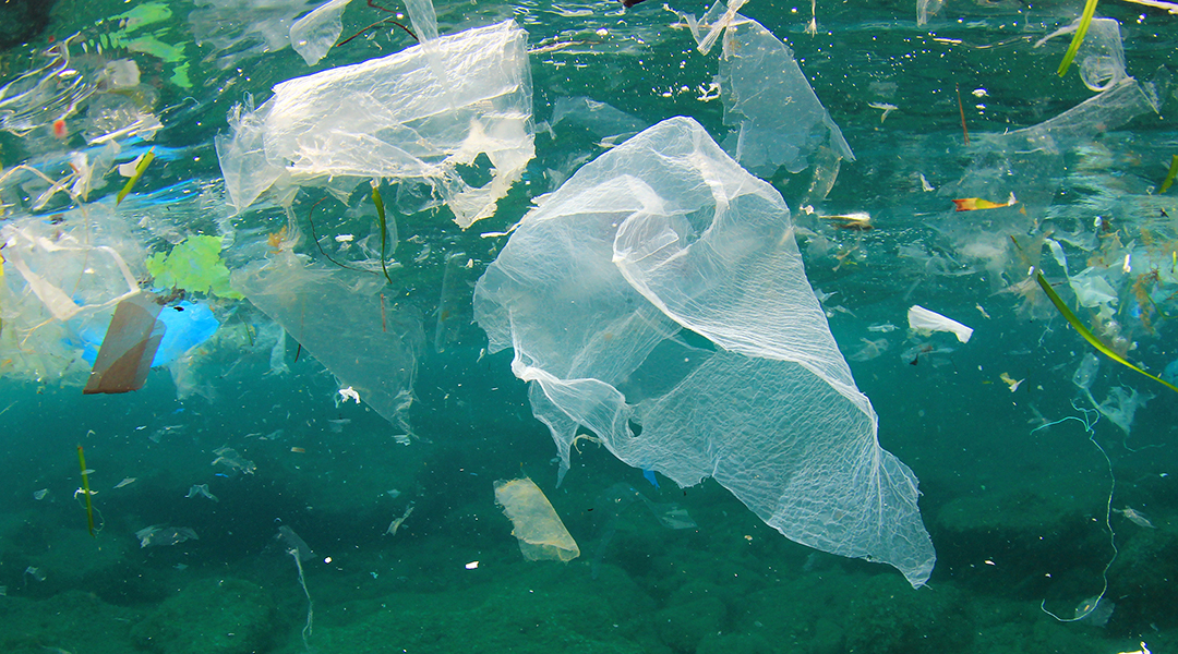 "Machine learning scopes out previously ""invisible"" microplastics"