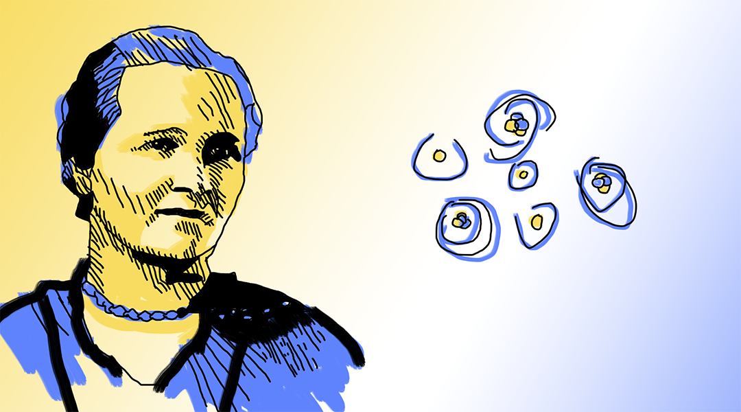 Pioneers in Science: Cecilia Payne-Gaposchkin