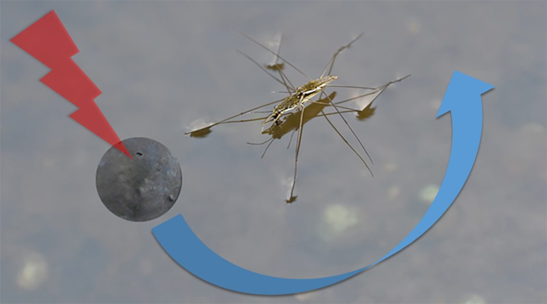 Millibots act as artificial insects