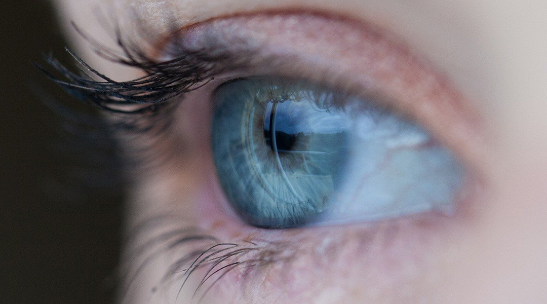 Artificial eye with 3D retina developed for the first time