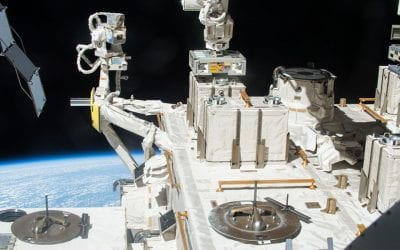 Can bacteria survive in space?