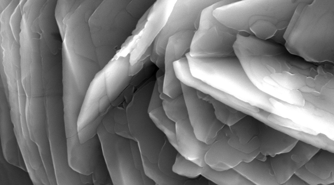 A rose garden on titanium surfaces